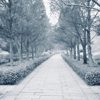 石象路神道